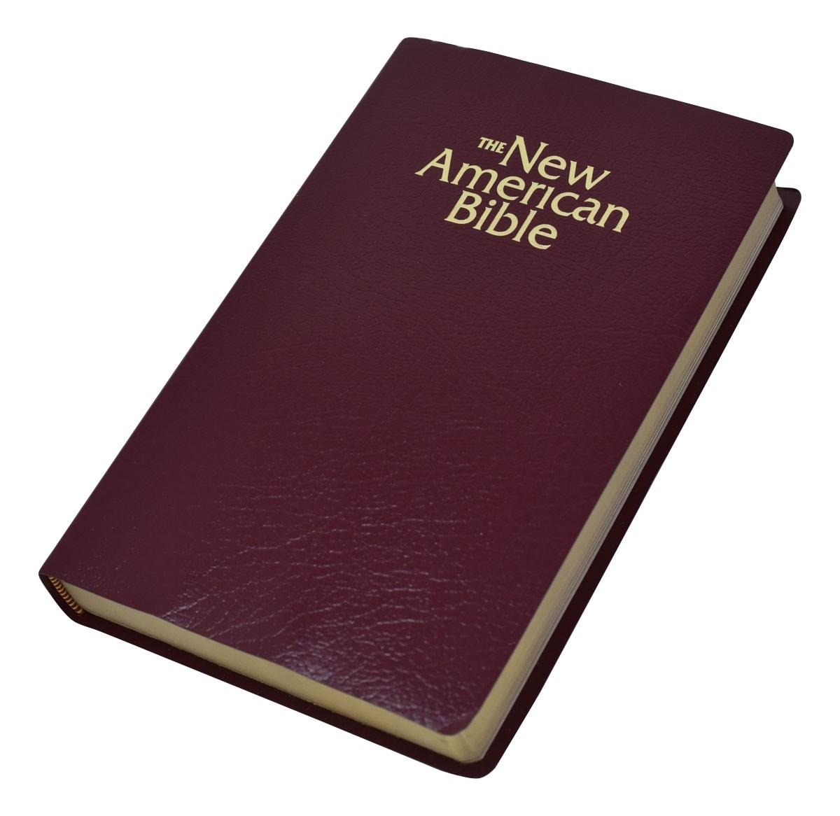NABRE Gift And Award Bible-Burgundy Imitation Leather