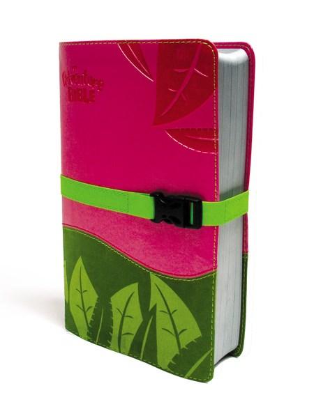 NIV Adventure Bible (Full Color)-Pink/Melon Green Duo-Tone