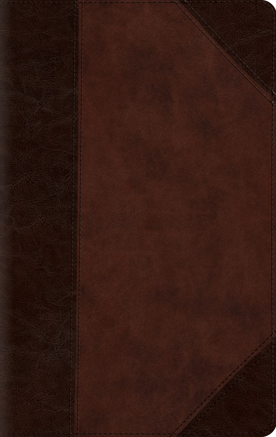 ESV Large Print Compact Bible-Brown/Walnut Portfolio Design TruTone