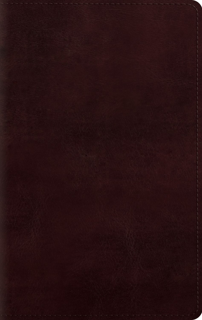 ESV Large Print Personal Size Bible-Mahogany TruTone