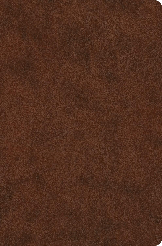 ESV Value Compact Bible-Brown TruTone