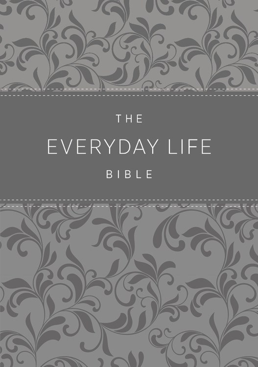 Amplified New Everyday Life Bible-Gray Euroluxe