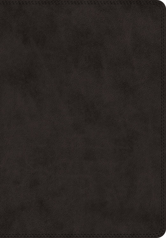 ESV Super Giant Print Bible-Black TruTone