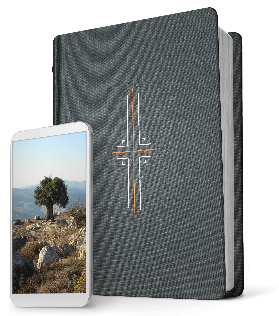 NLT Filament Bible-Gray Hardcover