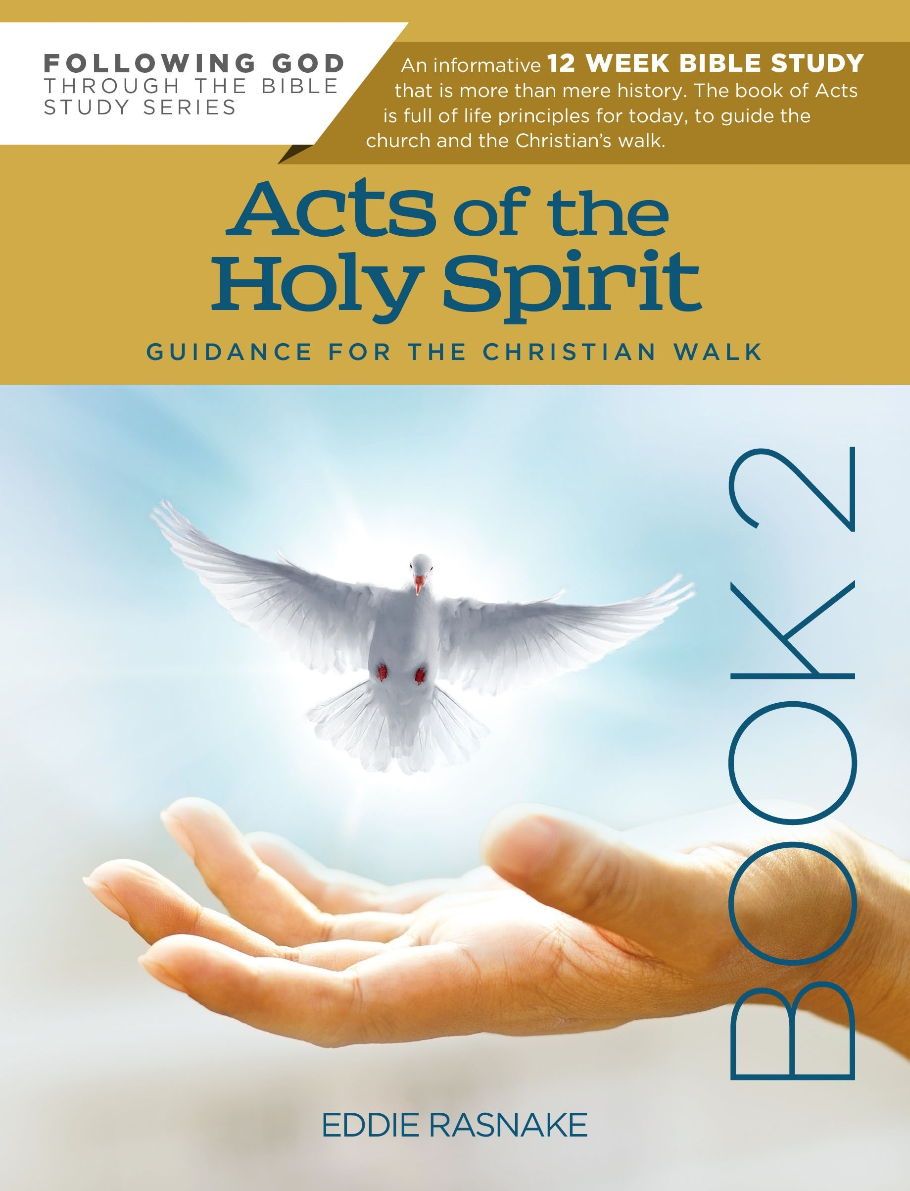 Acts Of The Holy Spirit Book 2