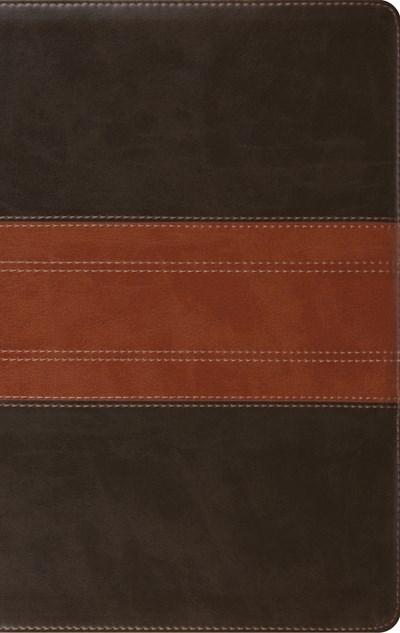 ESV Large Print Personal Size Bible-Forest/Tan Trail Design TruTone