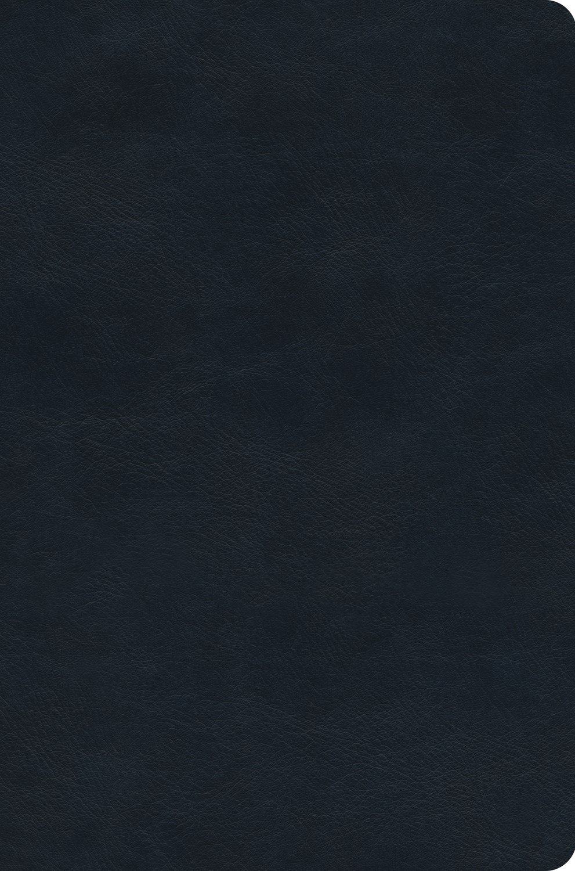 ESV Value Compact Bible-Navy TruTone