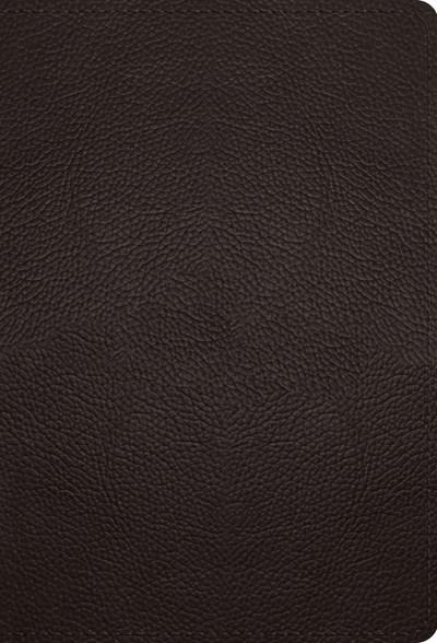 ESV Large Print Compact Bible-Deep Brown Buffalo Leather