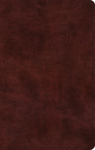 ESV Large Print Thinline Bible-Mahogany TruTone
